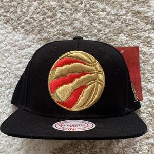 New raptors hat - Mitchell and ness